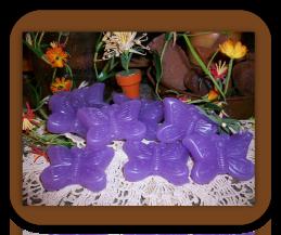 Butterfly Wax Tarts