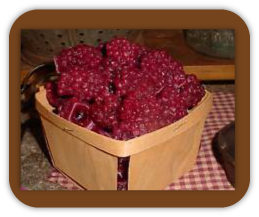 Berries Wax Tarts